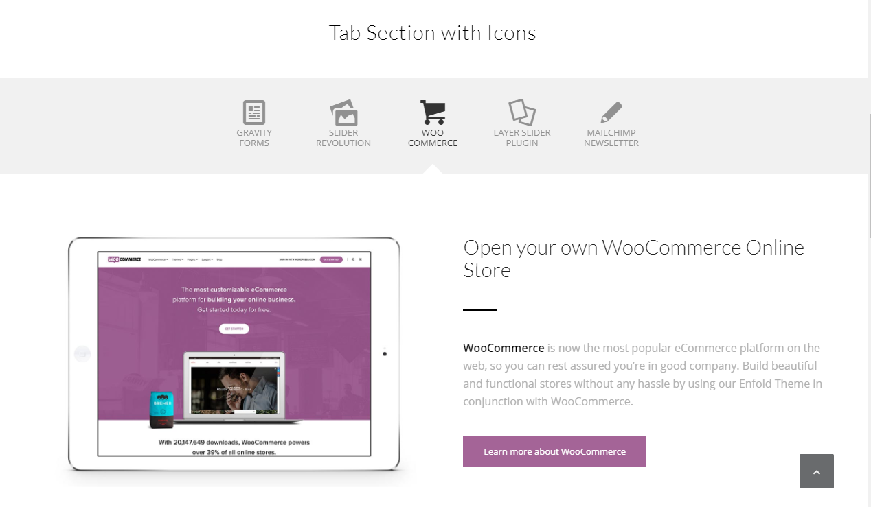 Tab Sections – Enfold Documentation