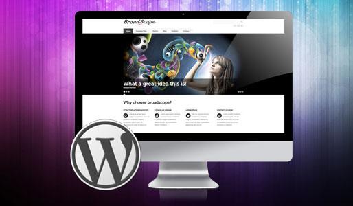 Abundance – eCommerce and Business Wordpress Theme | Kriesi at