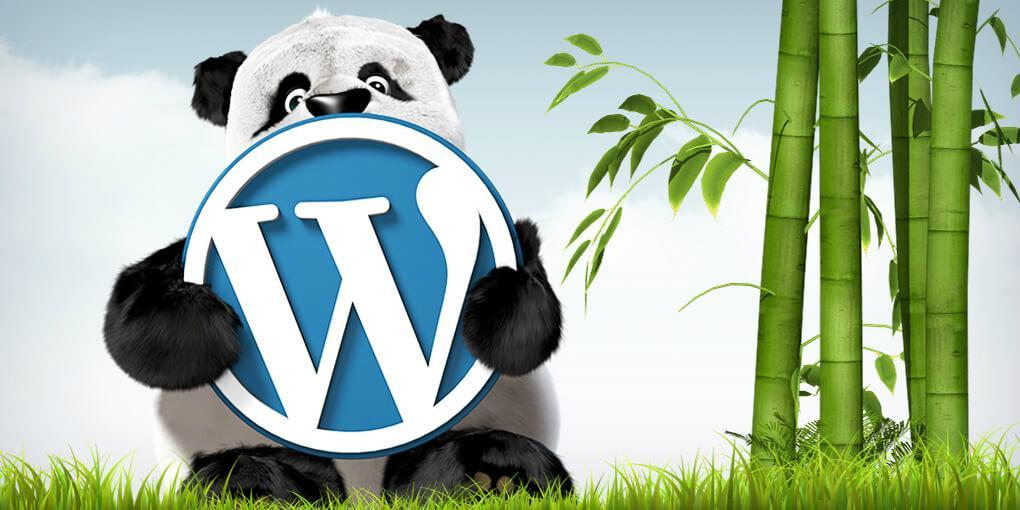 Creative Portfolio WordPress Themes - Best of 2017