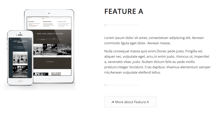 Enfold demo landing page features.