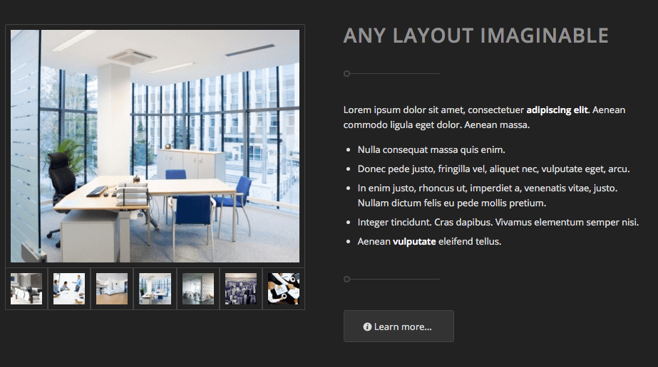 Enfold demo landing page galleries.